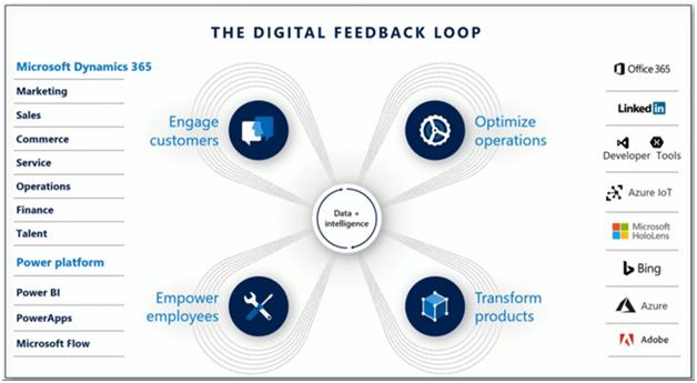 , Microsoft 365 and Digital Feedback Loop
